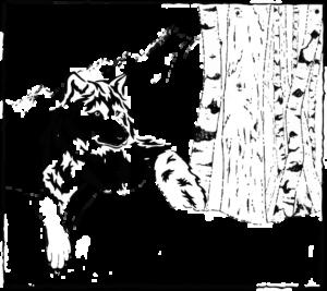 bosco delle rune logo bnb